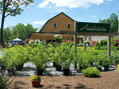 NH_Garden_Center_trees